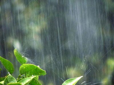 激しい雨が降っている様子
