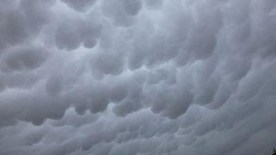 台風が接近し今にも降り出しそうな雲の様子