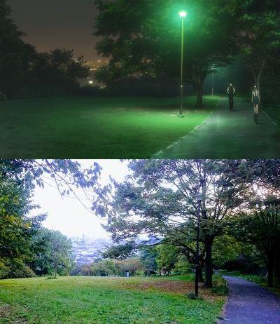日吉公園検証2