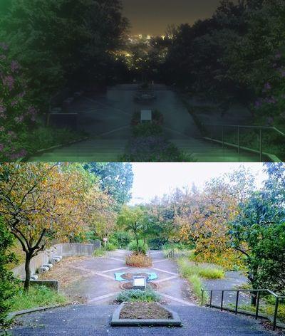日吉公園検証1
