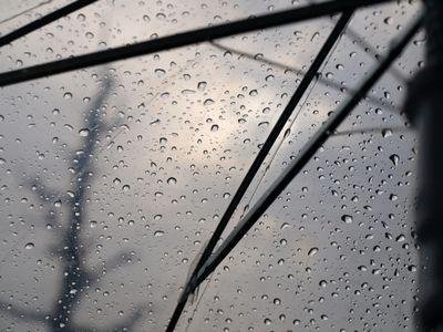 傘の雪が雨に変わっていく様子